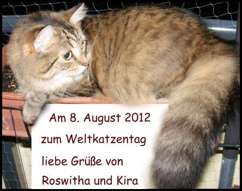 Weltkatzentag 2012