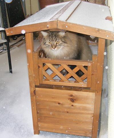 Ein Katzenhaus auf dem Balkon bietet im Winter Schutz vor Schnee und Kälte