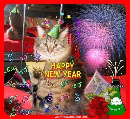 Guten Rutsch in ein glückliches und erfolgreiches Jahr 2013