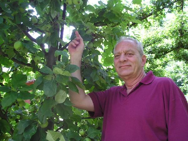 Gerhard Minsel im grün überdachten Gartenweg - Kleingärtner sein - mehr Lebensfreude
